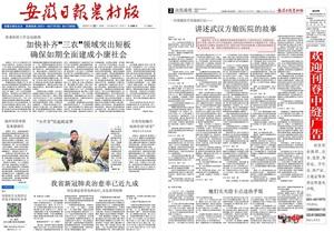 安徽日报农村版