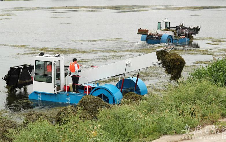 清理河道保安全度汛