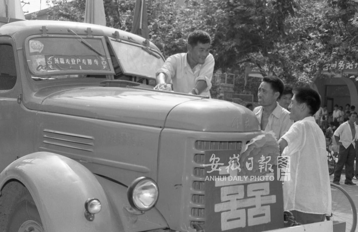 凤阳农民喜购汽车