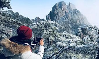 黄山雪后云海雾凇景观齐现