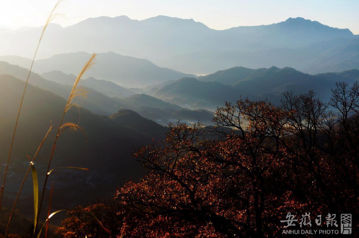 初冬大别山层林尽染 峰峦披金如诗如画