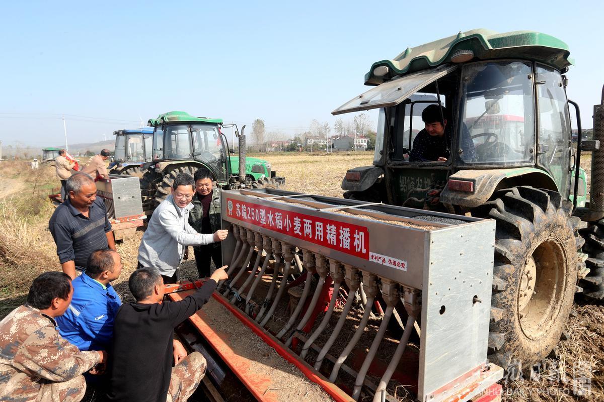 田头科学指导小麦播种不误农时