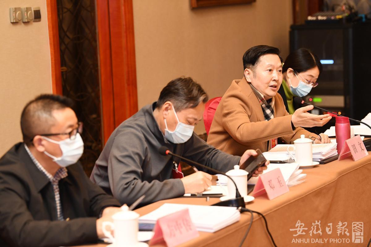 体育、文艺界别委员在分组会议上讨论省政府工作报告
