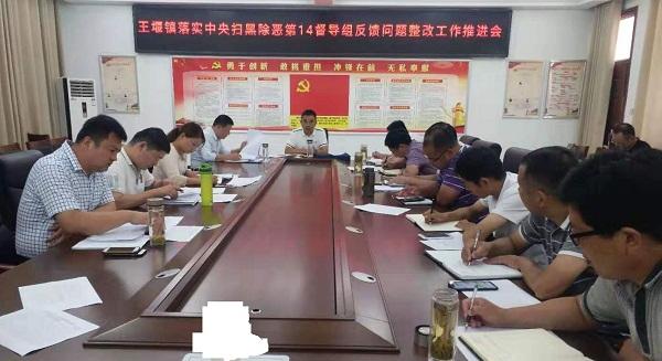 王堰镇落实中央扫黑除恶第14督导组反馈问题整改工作推进会