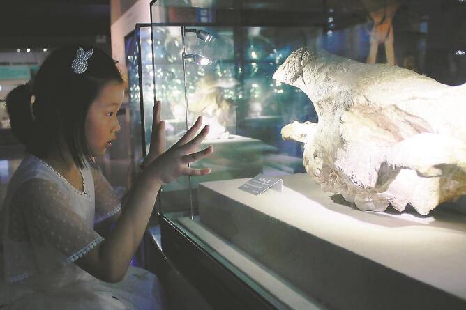 """""""博物馆+旅游"""" 用文化滋养心灵"""